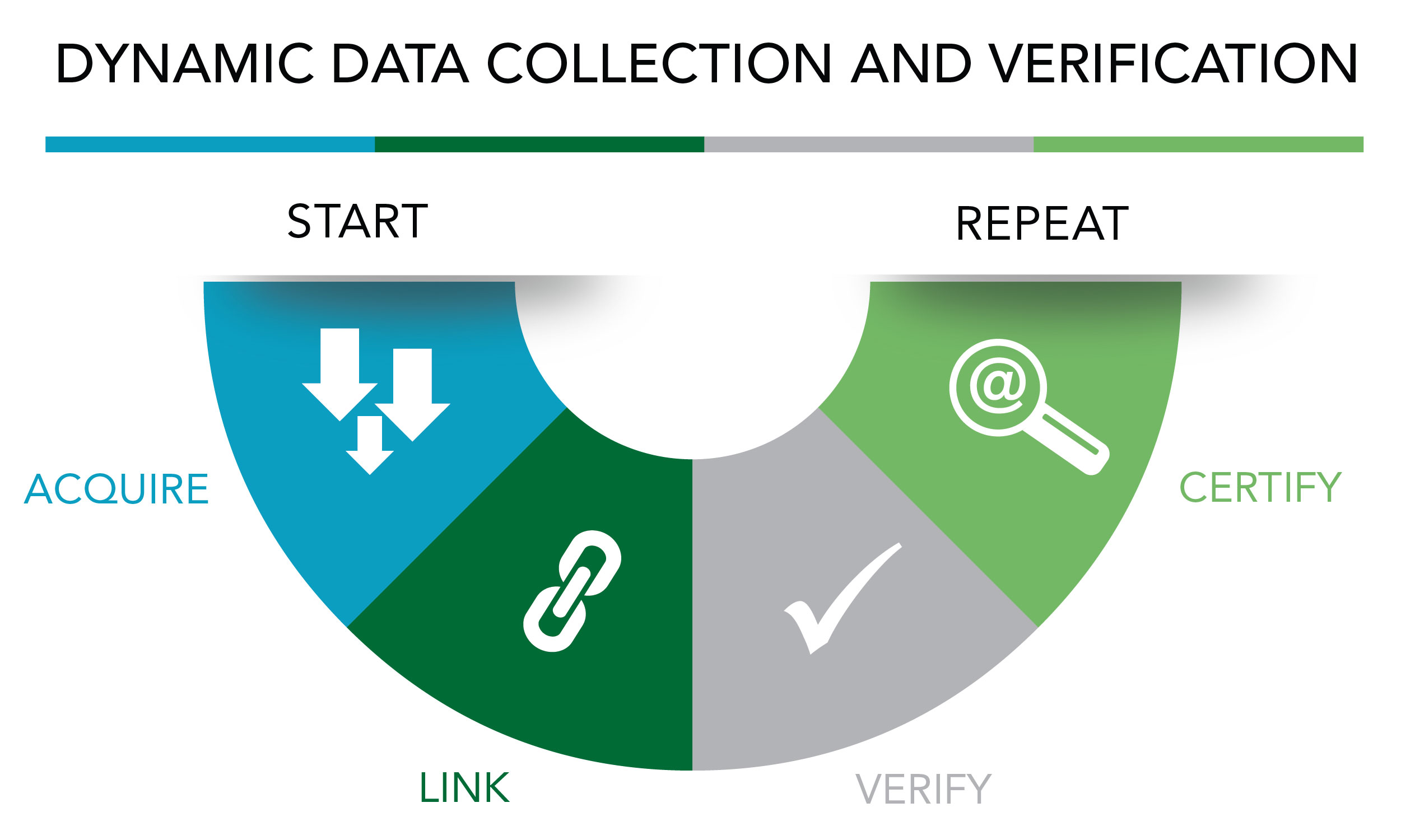 Dynamic Data Collection and Verification